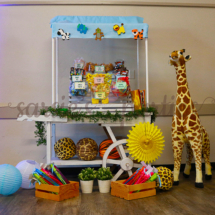Candy Buffet Cart