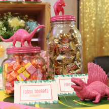 Girl Dinosaur Themed Party