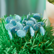 Caterpillar themed 1st Birthday Party Decor 35